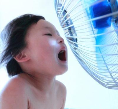 人気の扇風機おすすめランキング2018種類や価格差、電気代の違い